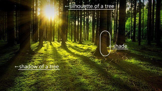 「影・陰」は英語で? ~shadow, shade, silhouette~